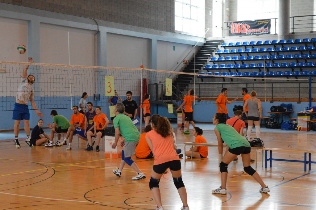 Green Volley 2014
